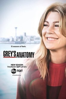 220px-Grey27s_Anatomy_season_15_poster